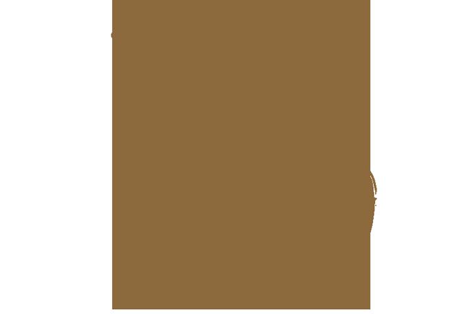 Regards Croisés Sur Mon Top 30 Des Romans Lus En 2016